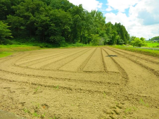 登記の地目が畑である土地に家を建てるために必要なこと