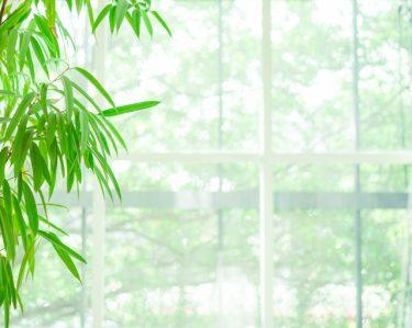 窓用の換気扇は小型でも大活躍!一体どんなもの?
