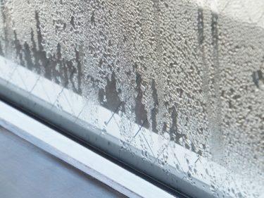 窓の結露を簡単にキャッチ!結露取りワイパーでピカピカに!