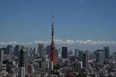 1LDKのマンションは東京でのひとり暮らしに最適!
